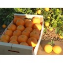 Boite orange tablet 15 kilos